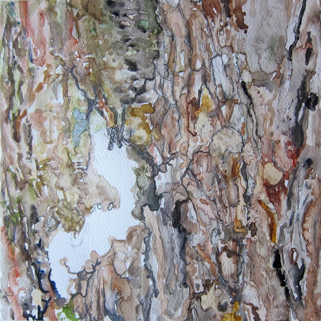 Watercolour Bark Drawing